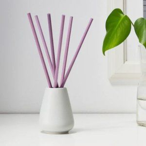 NEW Small vase & scented fragrance sticks lavender